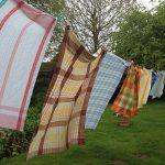 Gingham Tablecloths