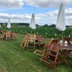 Garden-chairs-7